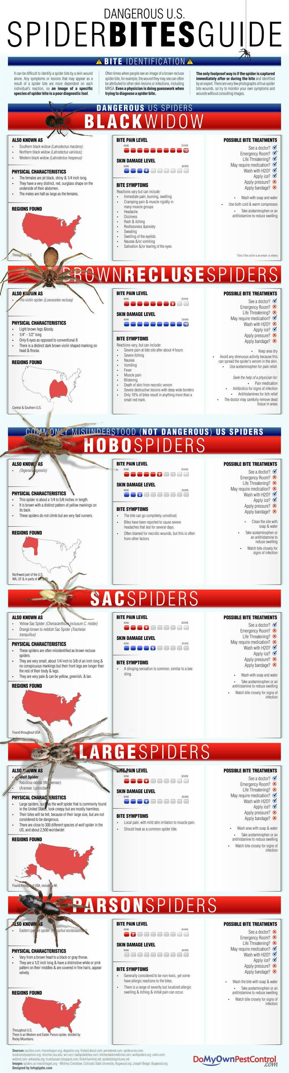 Spider Bite Identification Compare your bite to these