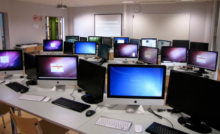 Information Technology most popular college majors