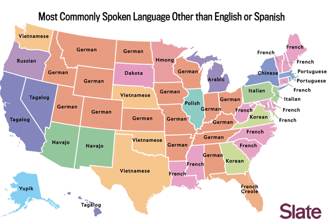 Most Common Languages in the US