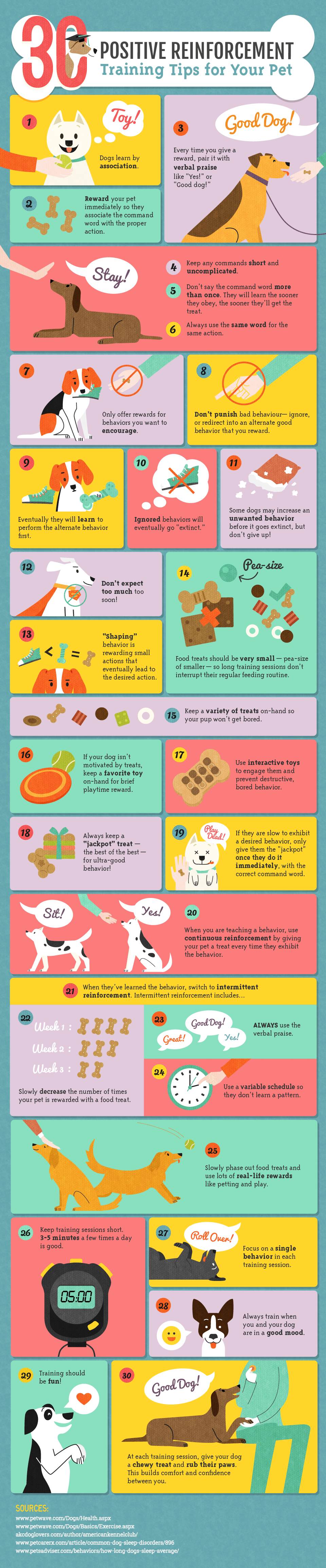 30 Positive Reinforcement Training Tips for Your Dog