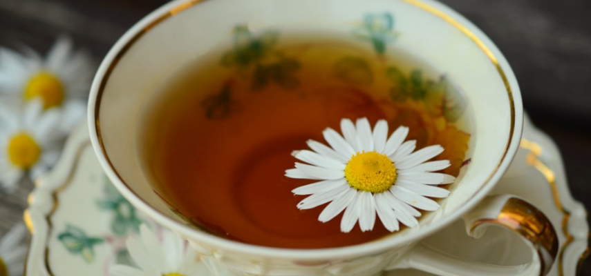How to Brew Every Tea