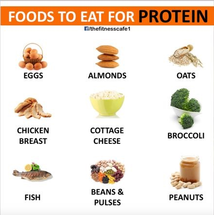 Good After Workout Protein Food