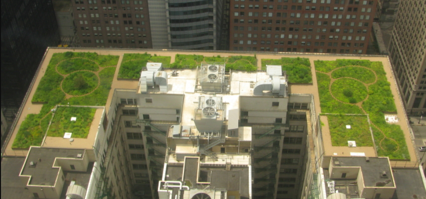 9 Awesome Facts About Green Roofs