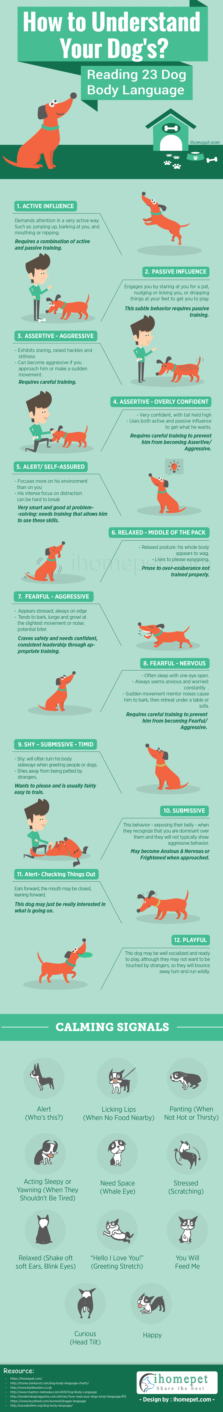 How to Understand Your Dog?
