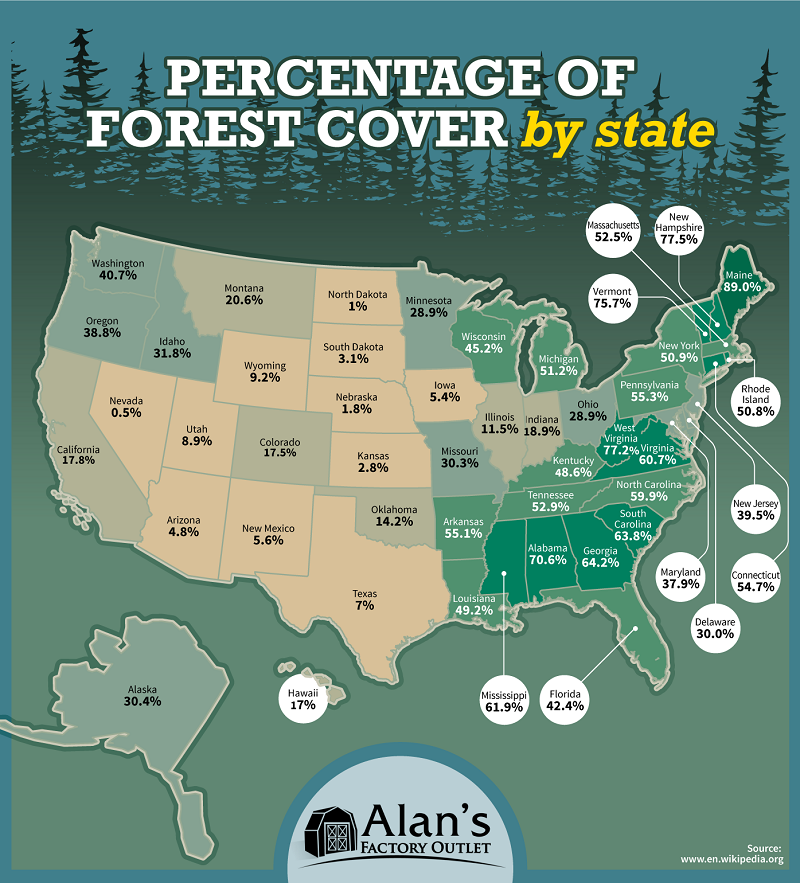 Percentage of Forest Cover by State