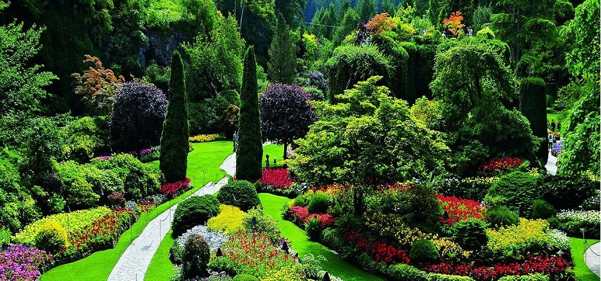 What Would Your Garden Look Like Around The World?