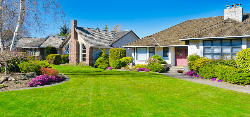Where Did Lawns Come From? The History Of Lawns